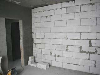 Из чего лучше строить стены