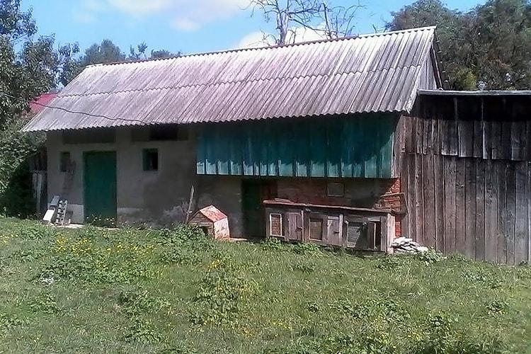 Чем покрыть крышу сарая